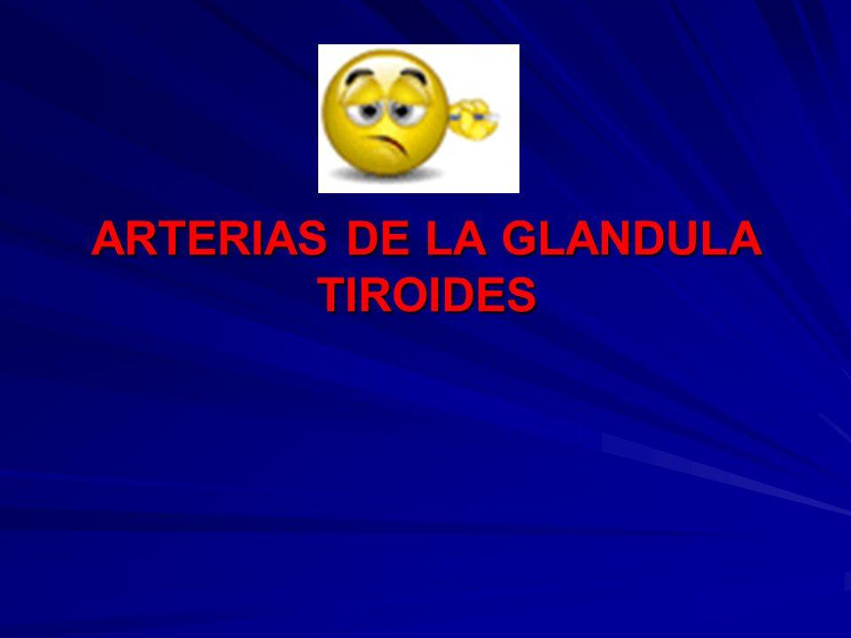 ARTERIAS DE LA GLANDULA TIROIDES