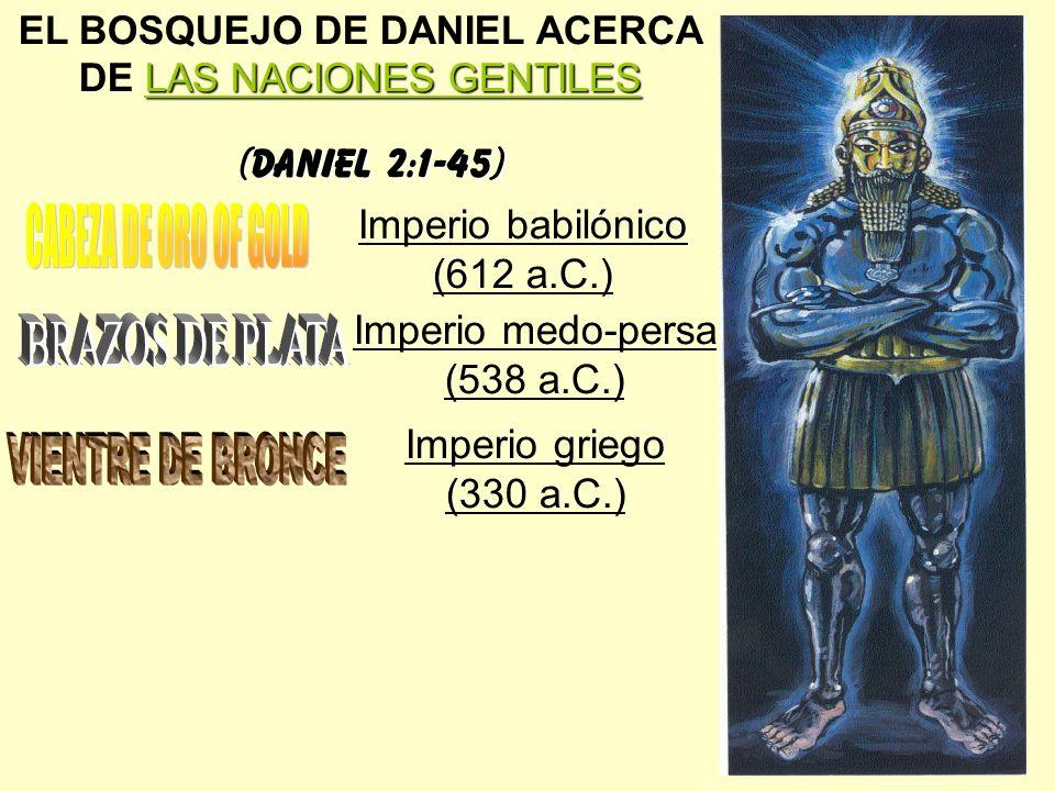 CABEZA DE ORO OF GOLD BRAZOS DE PLATA VIENTRE DE BRONCE