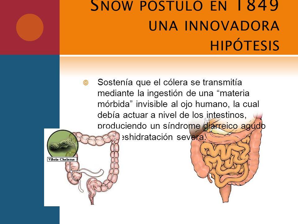 Snow postuló en 1849 una innovadora hipótesis