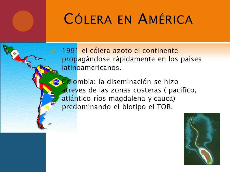 Cólera en América1991 el cólera azoto el continente propagándose rápidamente en los países latinoamericanos.