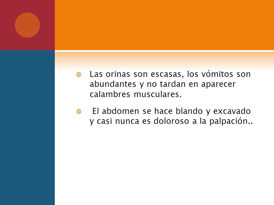 Las orinas son escasas, los vómitos son abundantes y no tardan en aparecer calambres musculares.