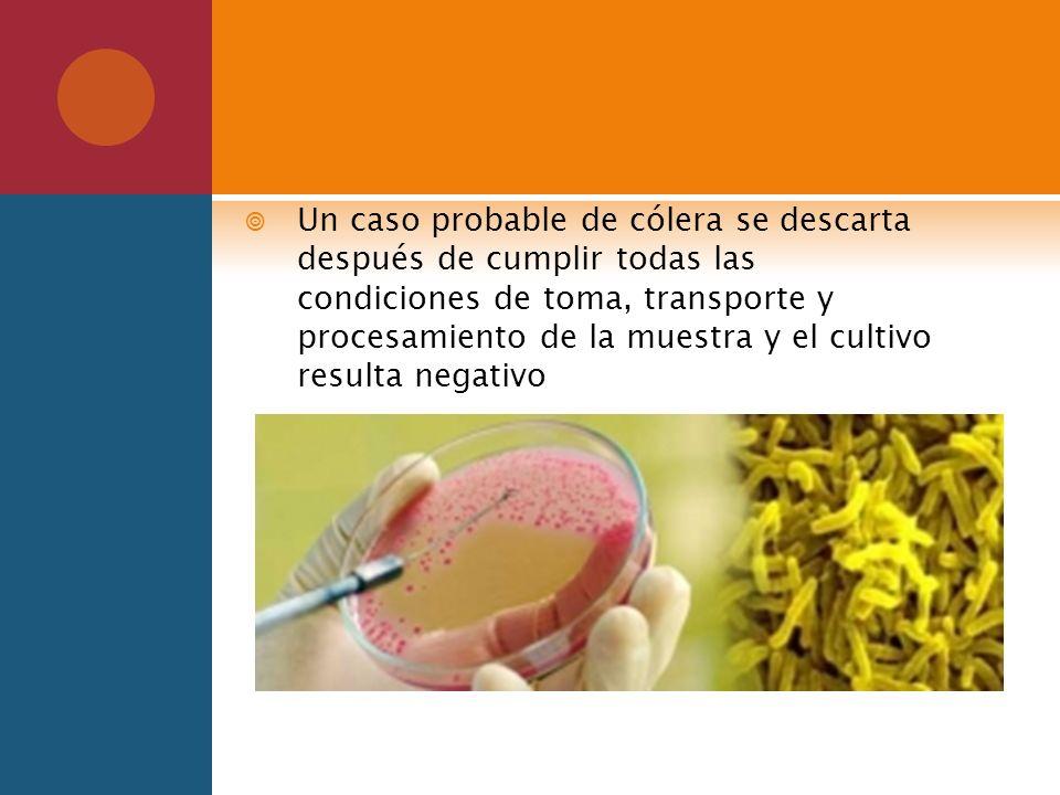 Un caso probable de cólera se descarta después de cumplir todas las condiciones de toma, transporte y procesamiento de la muestra y el cultivo resulta negativo