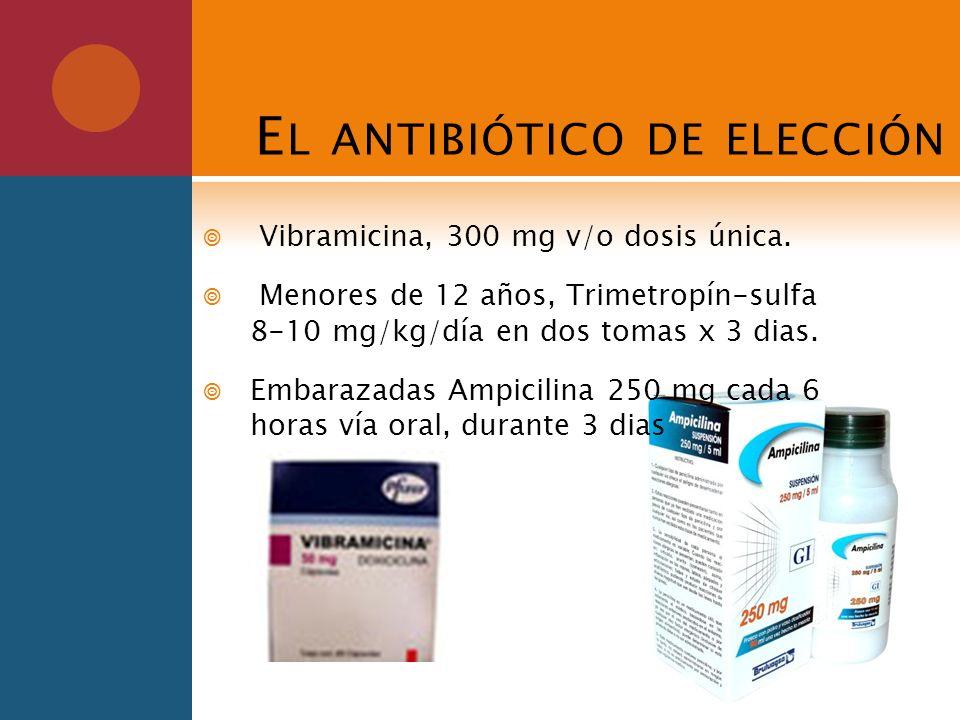 El antibiótico de elección
