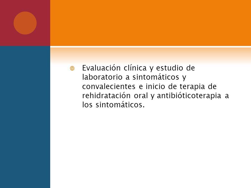 Evaluación clínica y estudio de laboratorio a sintomáticos y convalecientes e inicio de terapia de rehidratación oral y antibióticoterapia a los sintomáticos.