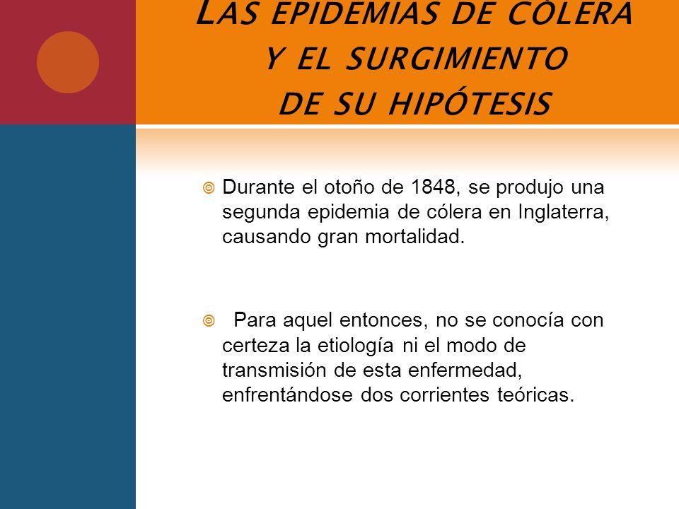 Las epidemias de cólera y el surgimiento de su hipótesis