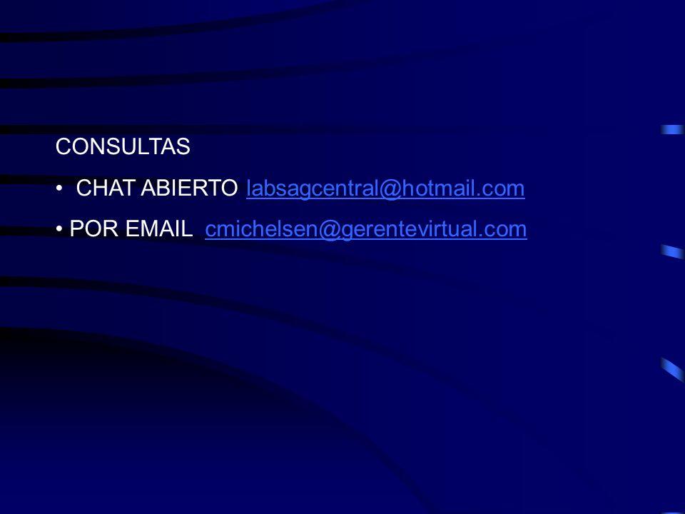 CONSULTAS CHAT ABIERTO labsagcentral@hotmail.com POR EMAIL cmichelsen@gerentevirtual.com