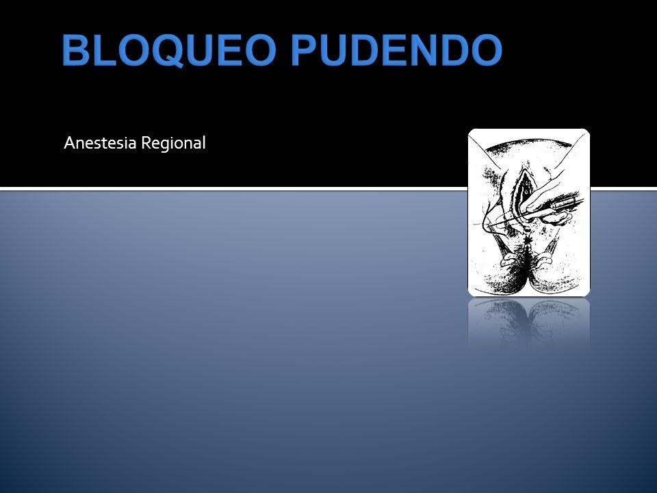 BLOQUEO PUDENDO Anestesia Regional