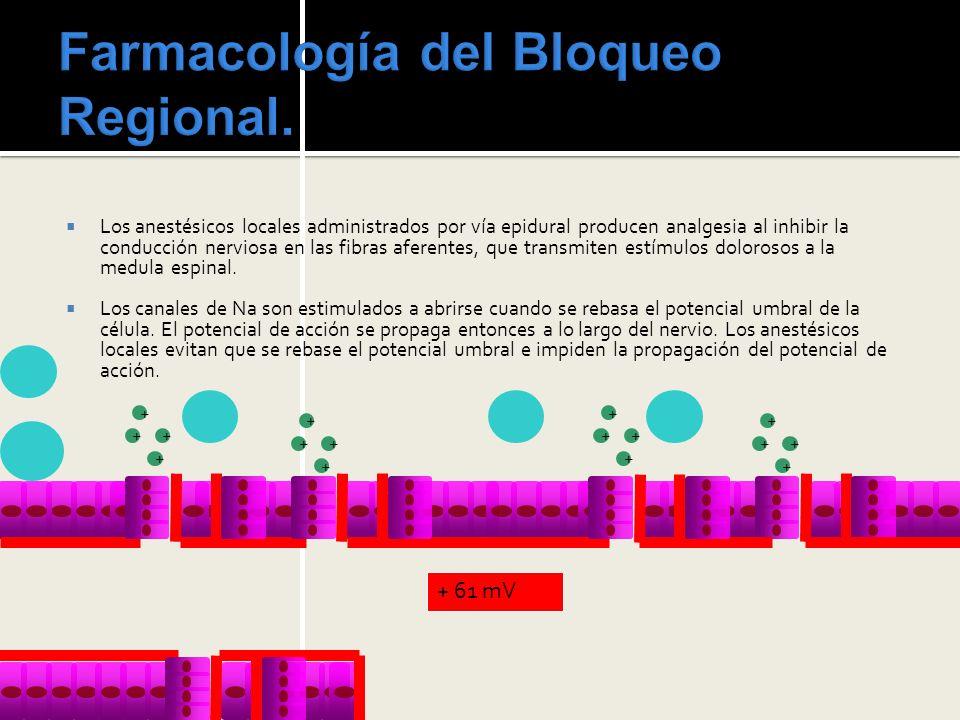 Farmacología del Bloqueo Regional.