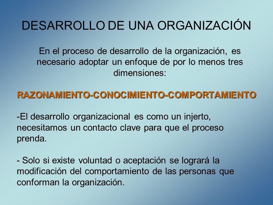 DESARROLLO DE UNA ORGANIZACIÓN