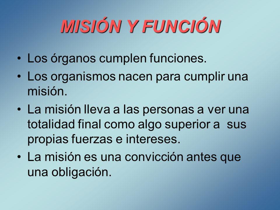 MISIÓN Y FUNCIÓN Los órganos cumplen funciones.