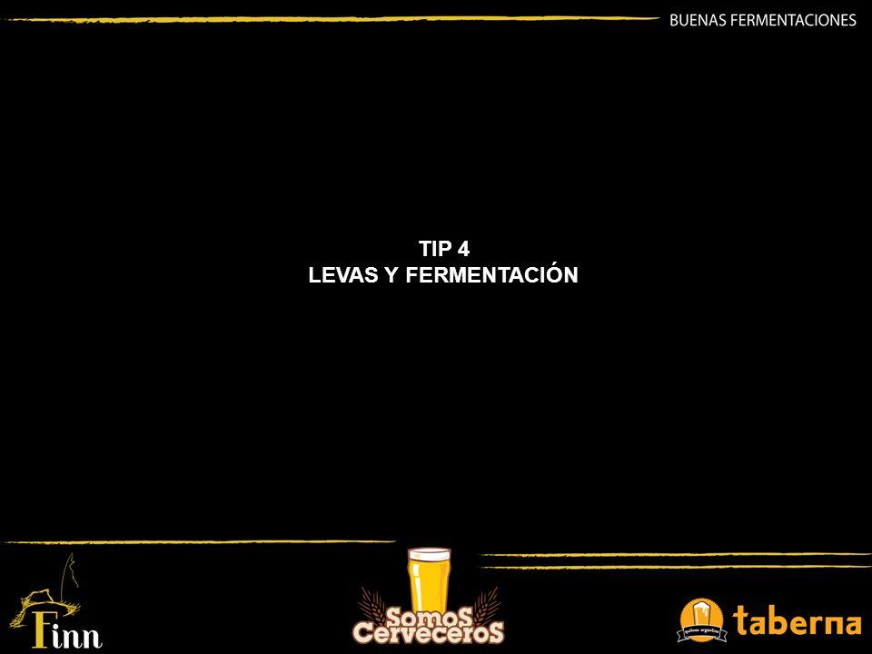TIP 4 LEVAS Y FERMENTACIÓN