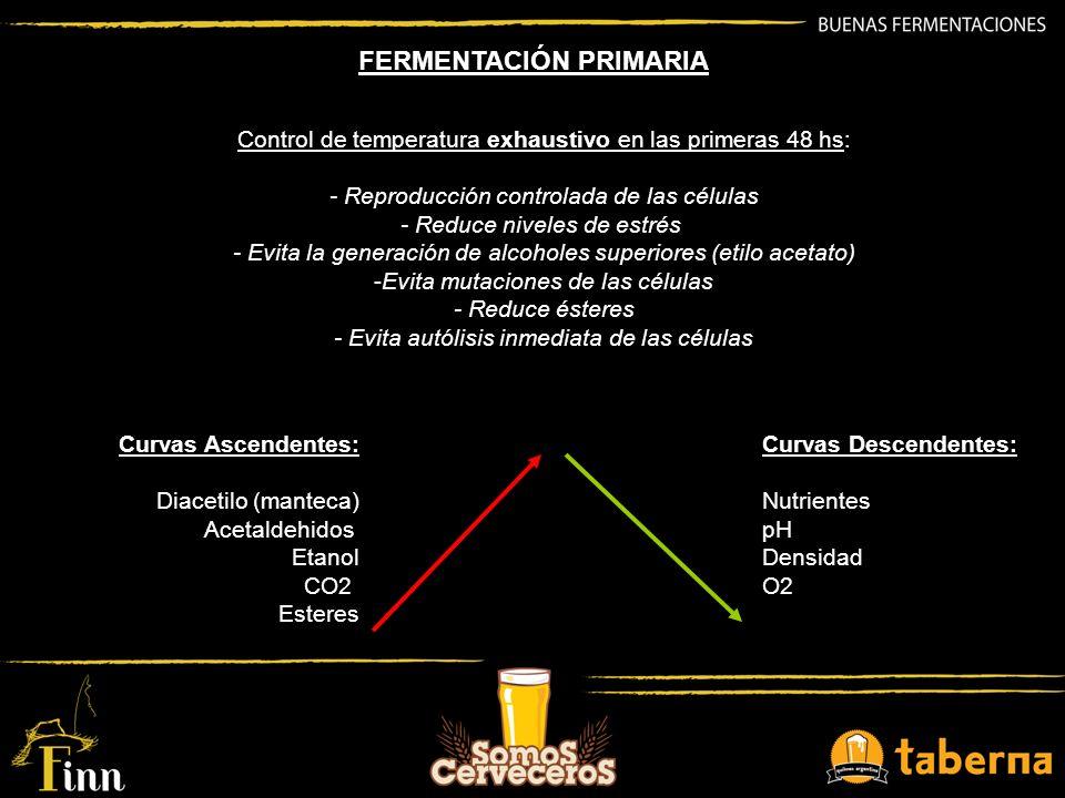 FERMENTACIÓN PRIMARIA