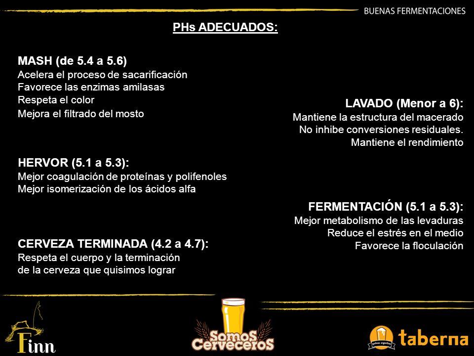 CERVEZA TERMINADA (4.2 a 4.7):