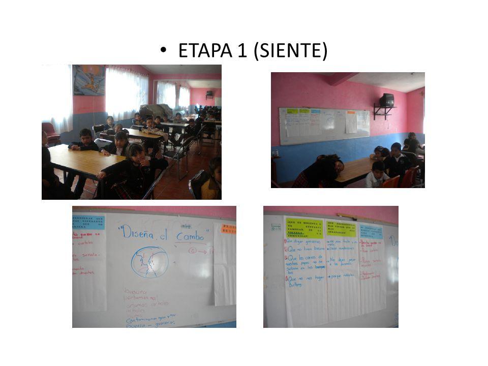 ETAPA 1 (SIENTE)