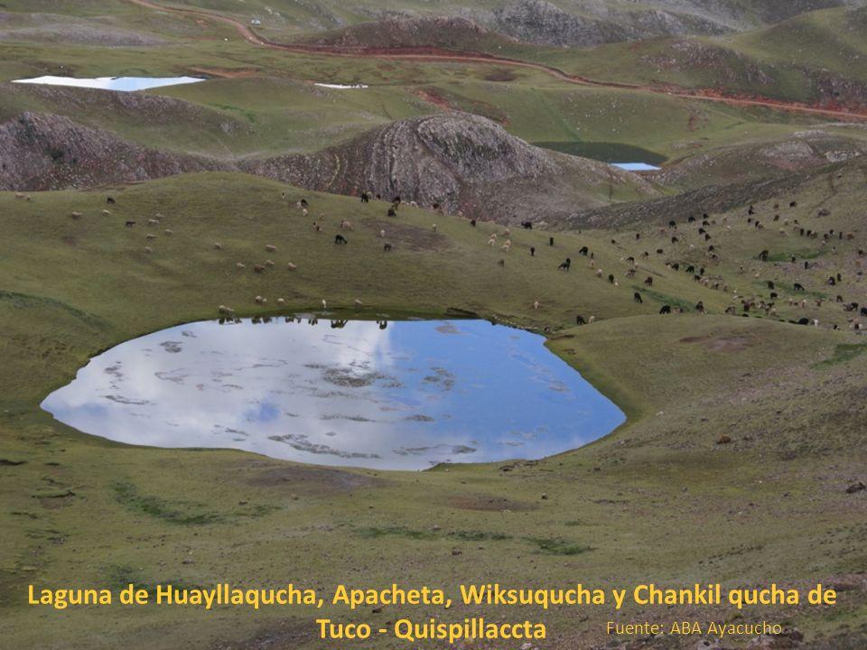 Laguna de Huayllaqucha, Apacheta, Wiksuqucha y Chankil qucha de Tuco - Quispillaccta
