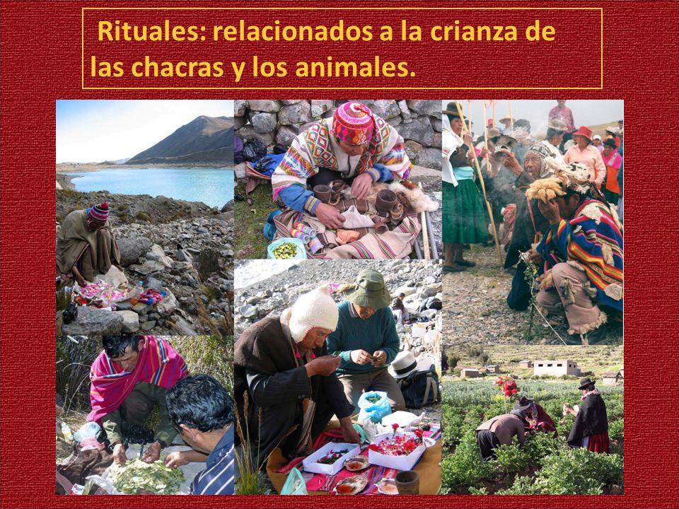 Rituales: relacionados a la crianza de las chacras y los animales.