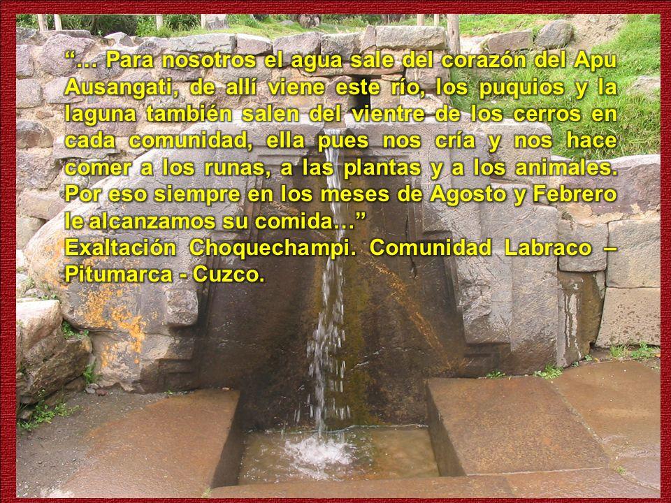 … Para nosotros el agua sale del corazón del Apu Ausangati, de allí viene este río, los puquios y la laguna también salen del vientre de los cerros en cada comunidad, ella pues nos cría y nos hace comer a los runas, a las plantas y a los animales. Por eso siempre en los meses de Agosto y Febrero le alcanzamos su comida…