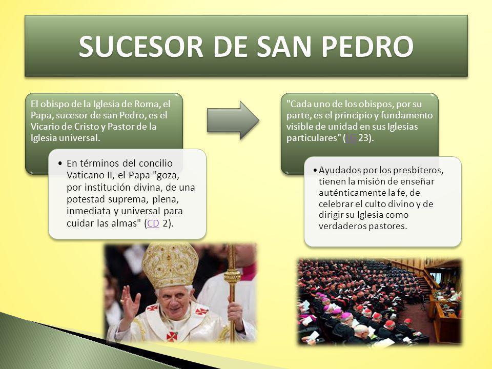SUCESOR DE SAN PEDRO El obispo de la Iglesia de Roma, el Papa, sucesor de san Pedro, es el Vicario de Cristo y Pastor de la Iglesia universal.