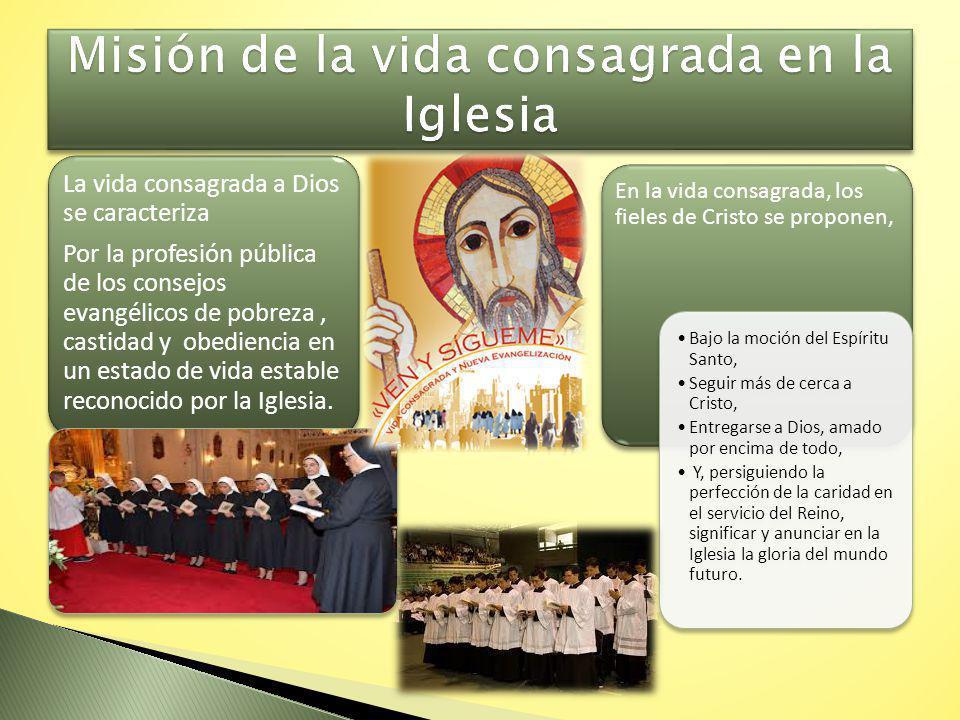 Misión de la vida consagrada en la Iglesia