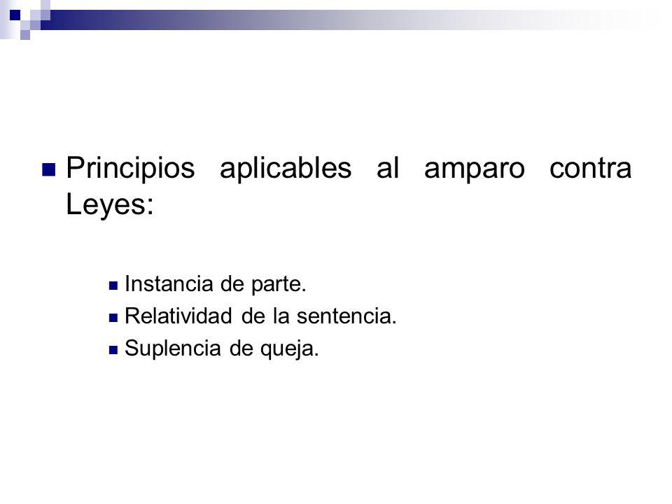 Principios aplicables al amparo contra Leyes: