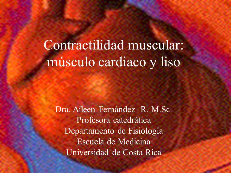 Contractilidad muscular: músculo cardiaco y liso
