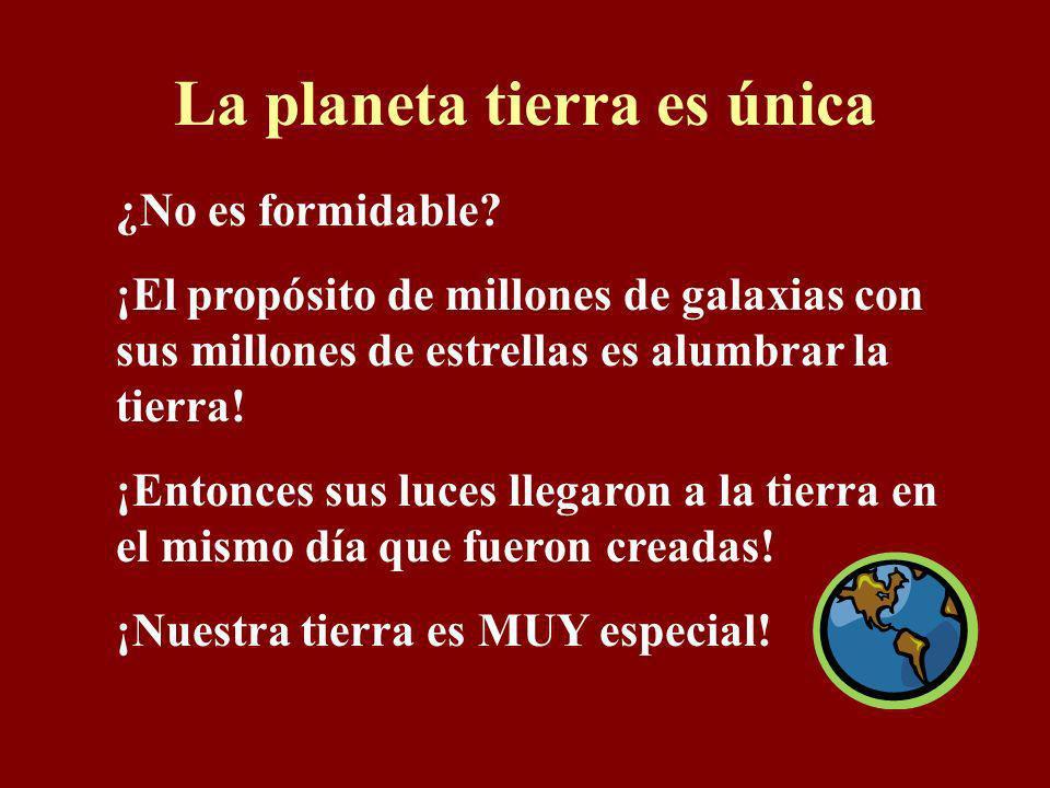 La planeta tierra es única