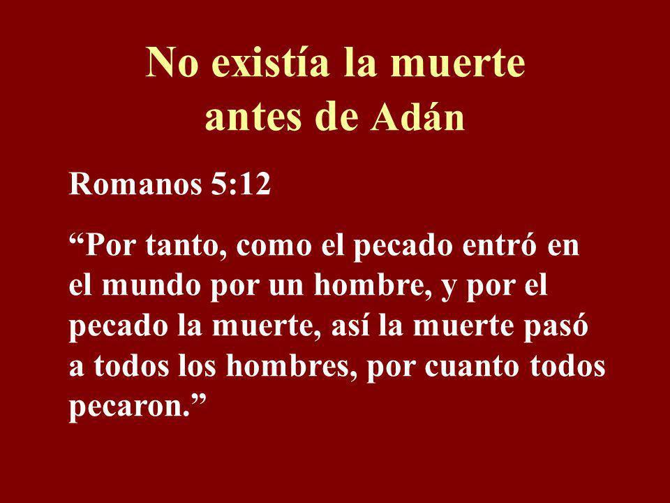 No existía la muerte antes de Adán