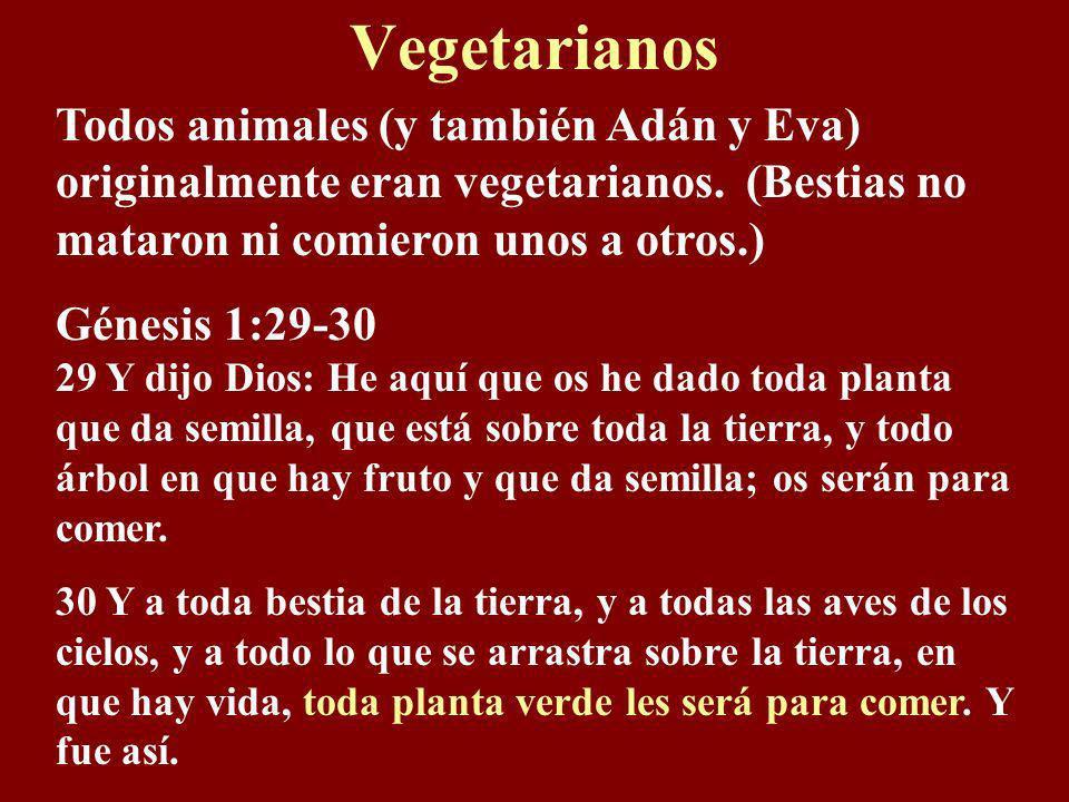 Vegetarianos Todos animales (y también Adán y Eva) originalmente eran vegetarianos. (Bestias no mataron ni comieron unos a otros.)