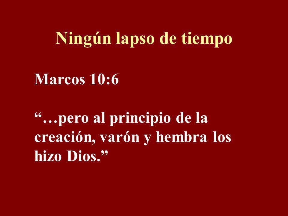 Ningún lapso de tiempo Marcos 10:6