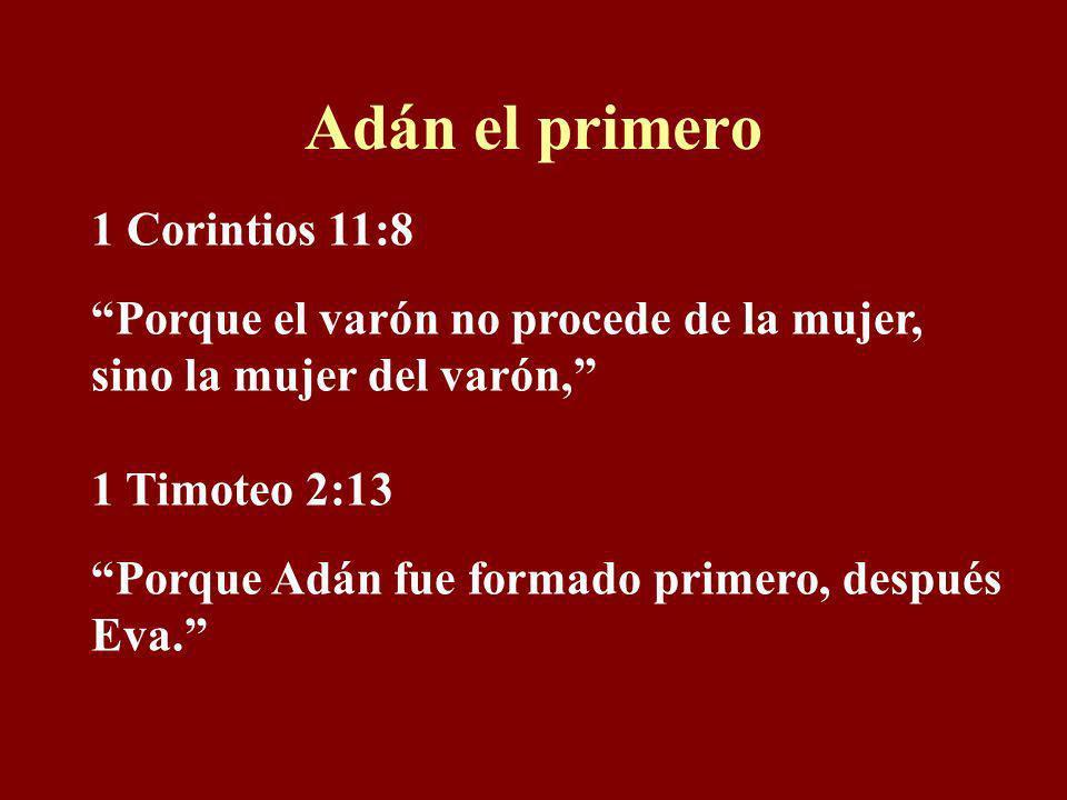 Adán el primero 1 Corintios 11:8
