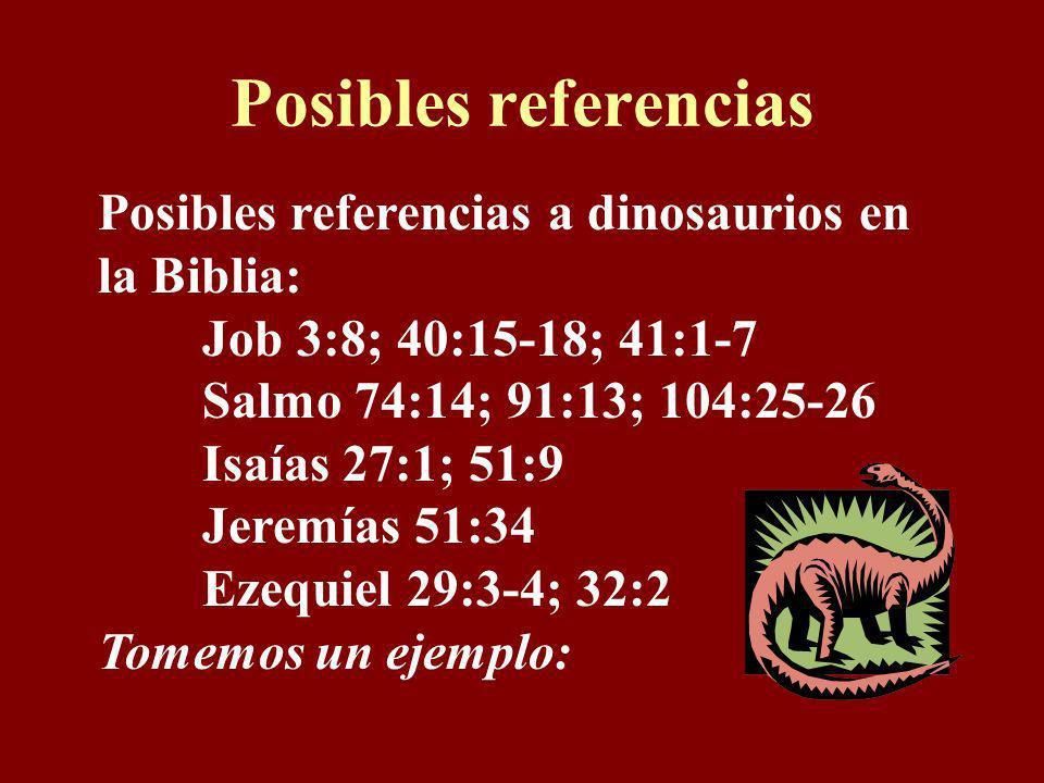 Posibles referencias Posibles referencias a dinosaurios en la Biblia: