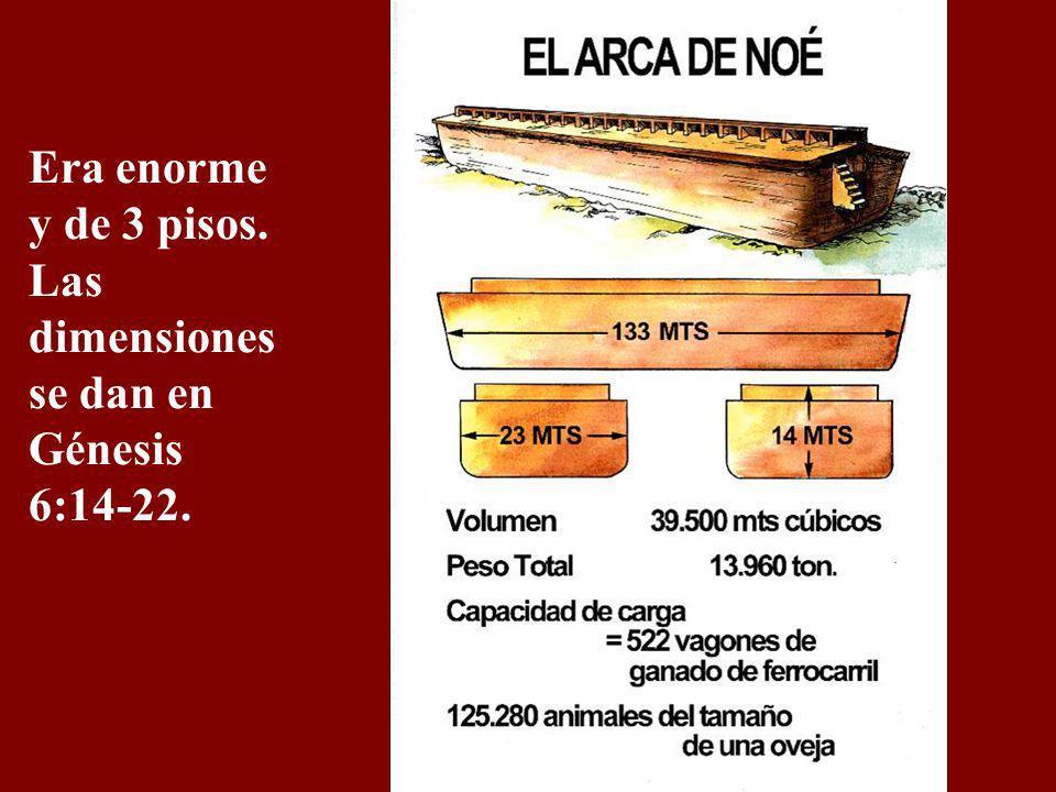 Era enorme y de 3 pisos. Las dimensiones se dan en Génesis 6:14-22.
