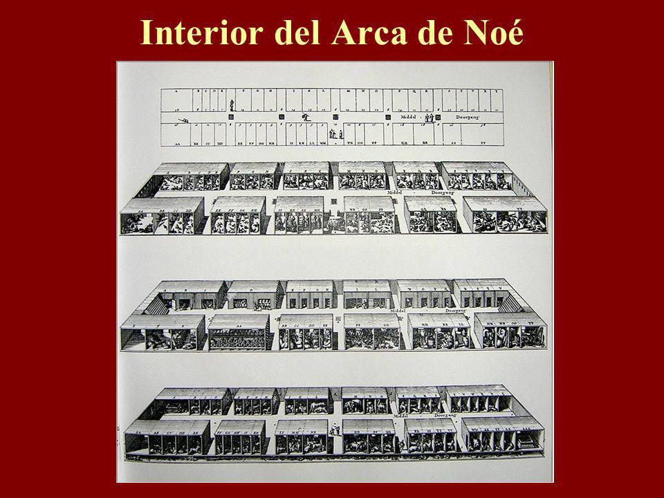 Interior del Arca de Noé