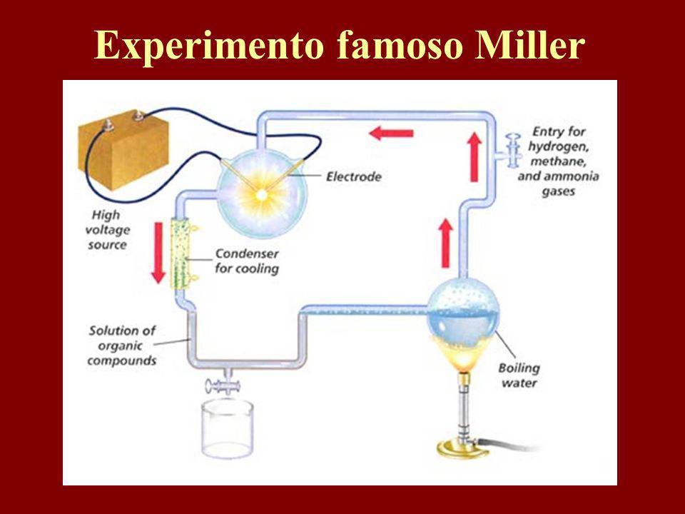 Experimento famoso Miller