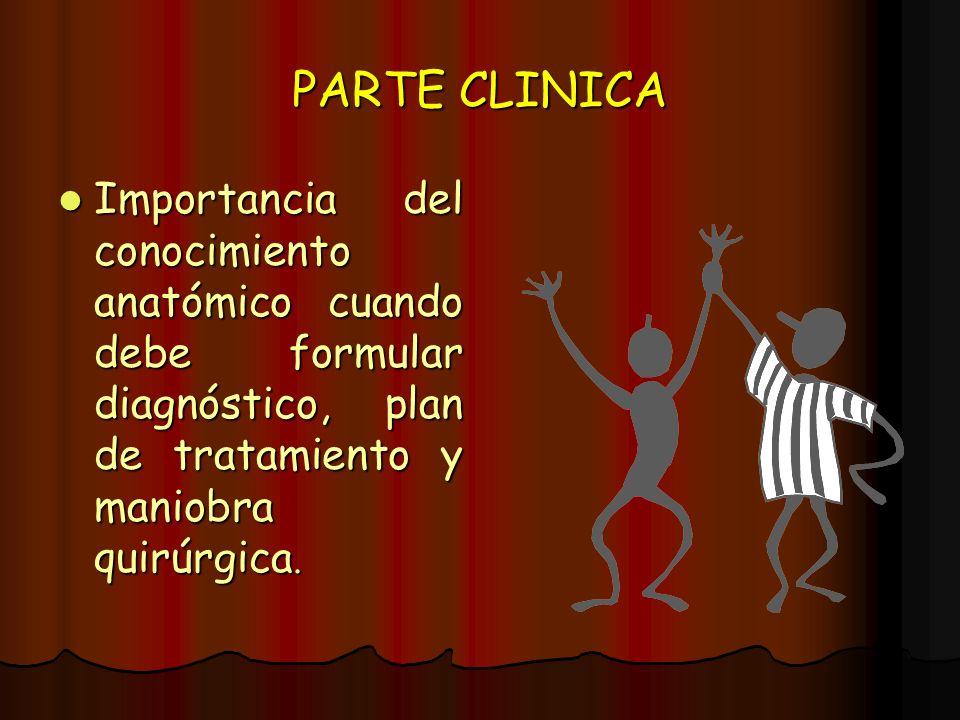 PARTE CLINICA Importancia del conocimiento anatómico cuando debe formular diagnóstico, plan de tratamiento y maniobra quirúrgica.