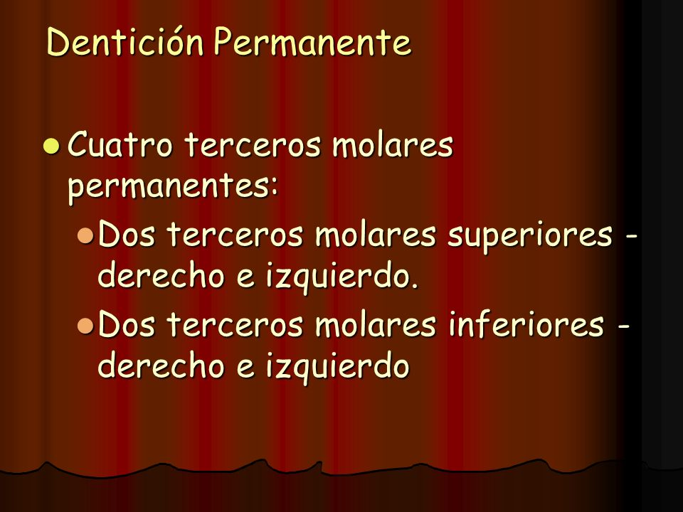 Dentición Permanente Cuatro terceros molares permanentes: