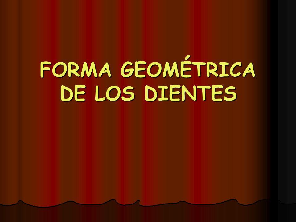 FORMA GEOMÉTRICA DE LOS DIENTES