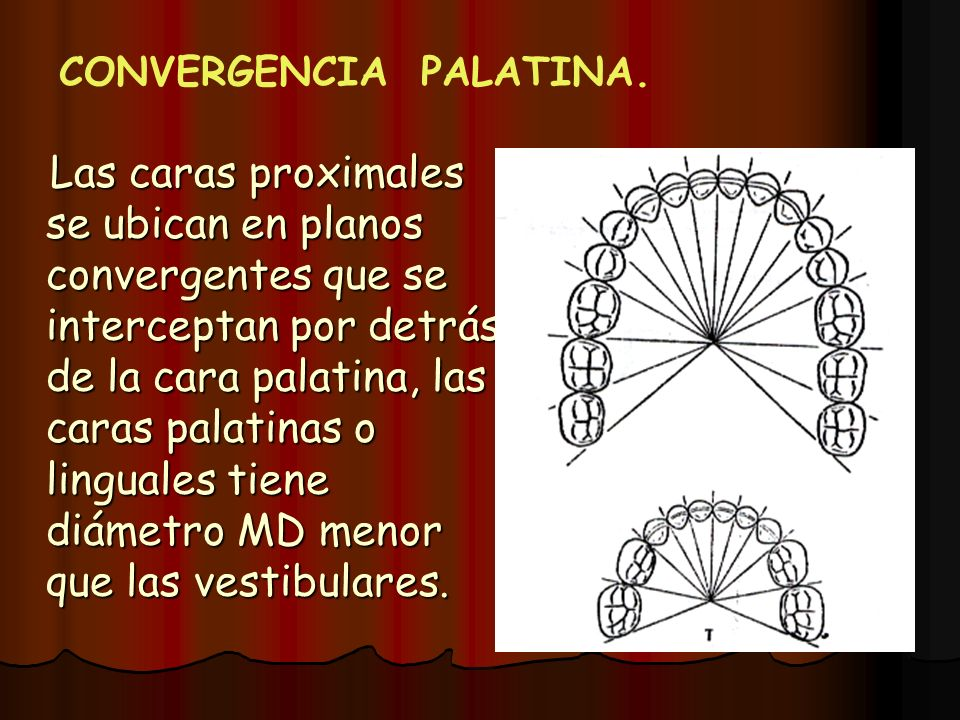 CONVERGENCIA PALATINA.