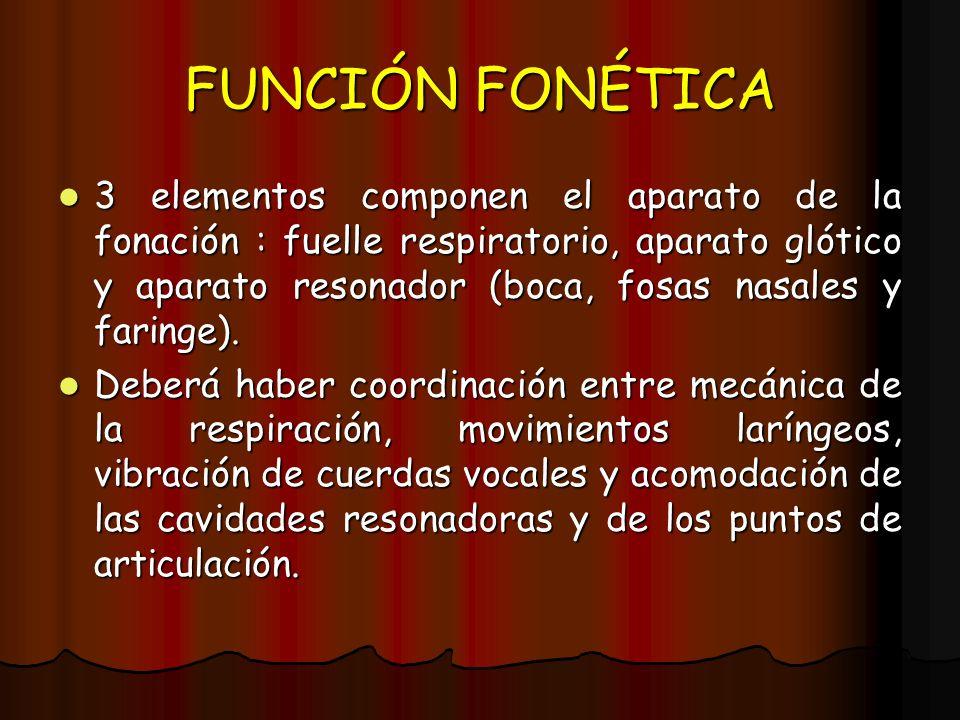 FUNCIÓN FONÉTICA