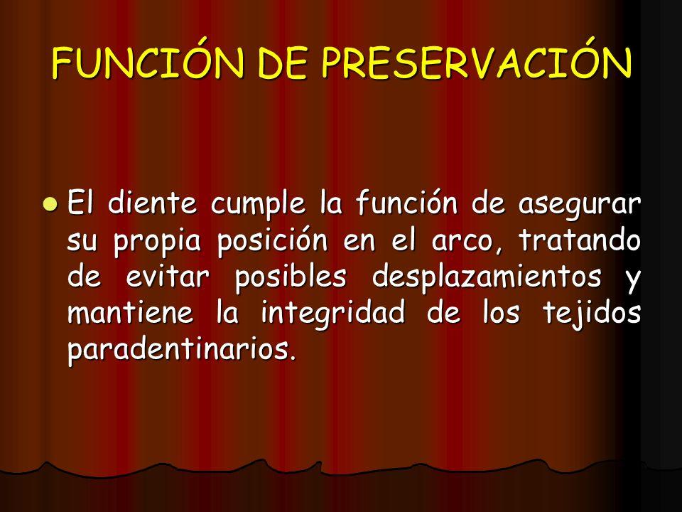 FUNCIÓN DE PRESERVACIÓN