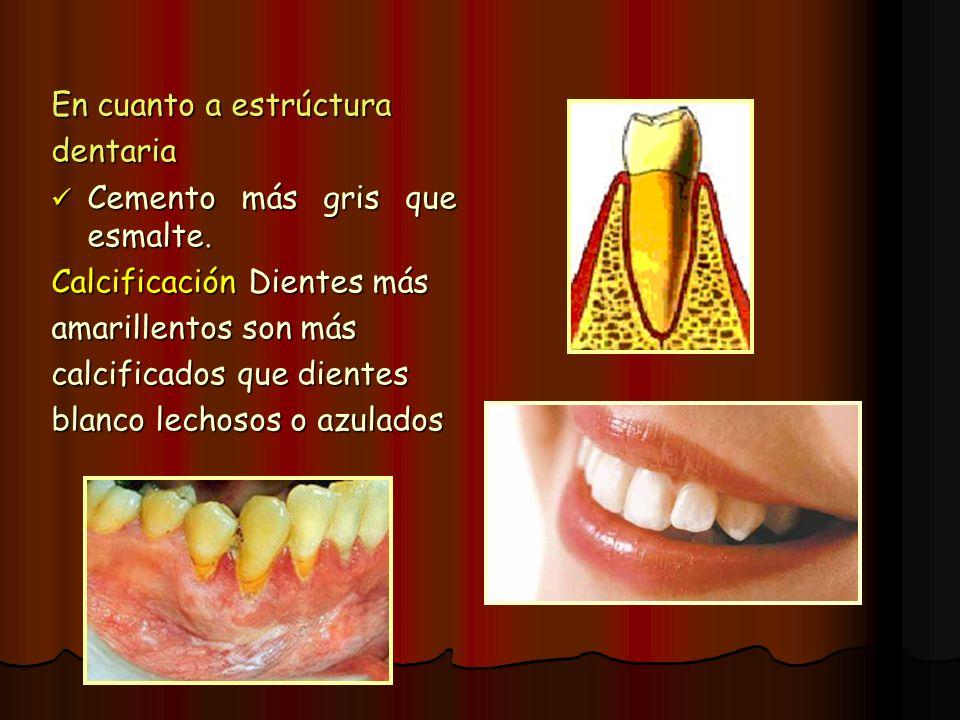 En cuanto a estrúctura dentaria. Cemento más gris que esmalte. Calcificación Dientes más. amarillentos son más.
