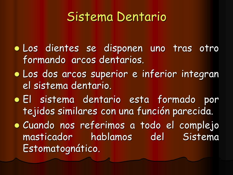 Sistema Dentario Los dientes se disponen uno tras otro formando arcos dentarios. Los dos arcos superior e inferior integran el sistema dentario.