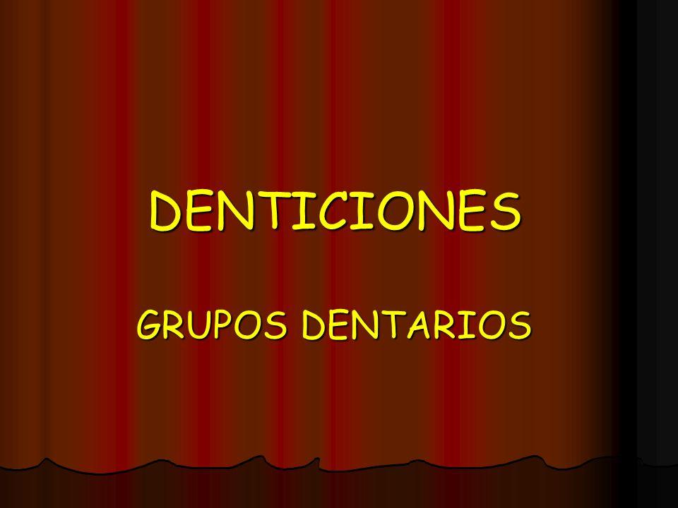 DENTICIONES GRUPOS DENTARIOS