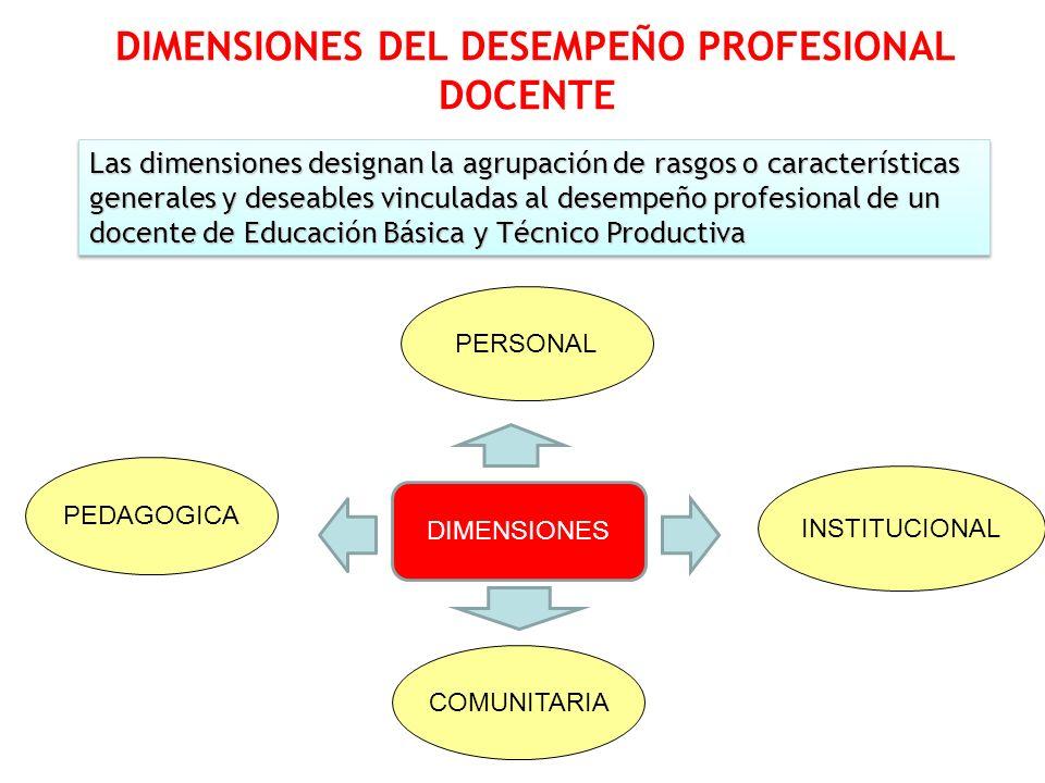 DIMENSIONES DEL DESEMPEÑO PROFESIONAL
