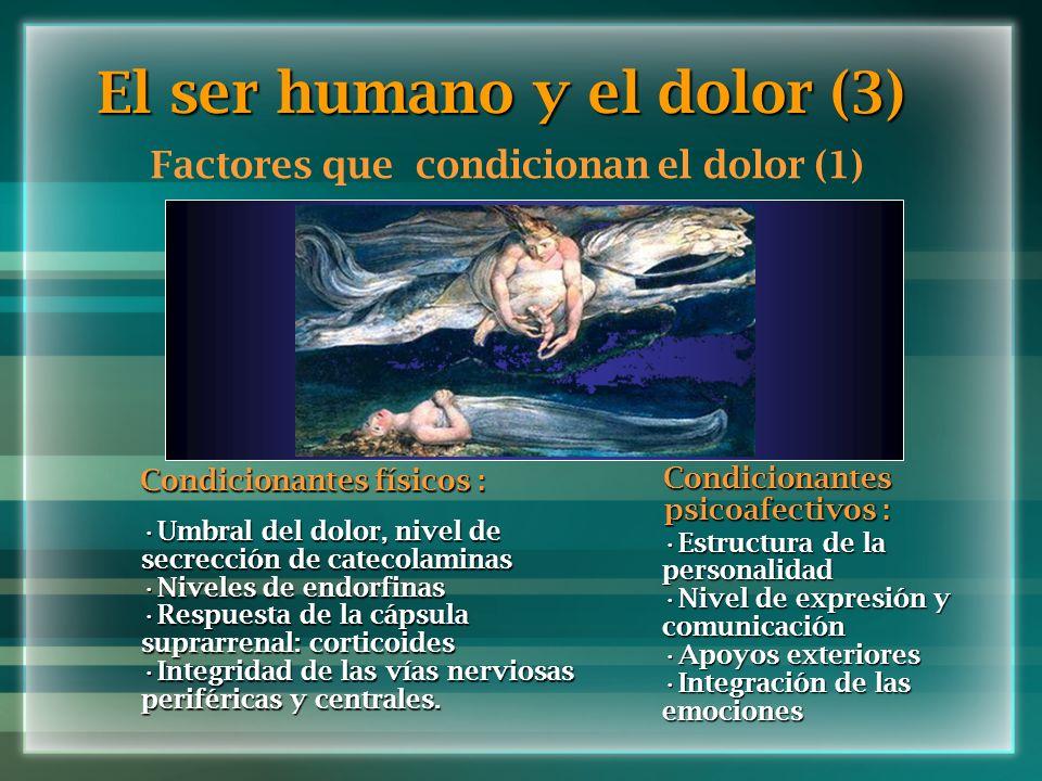 El ser humano y el dolor (3)