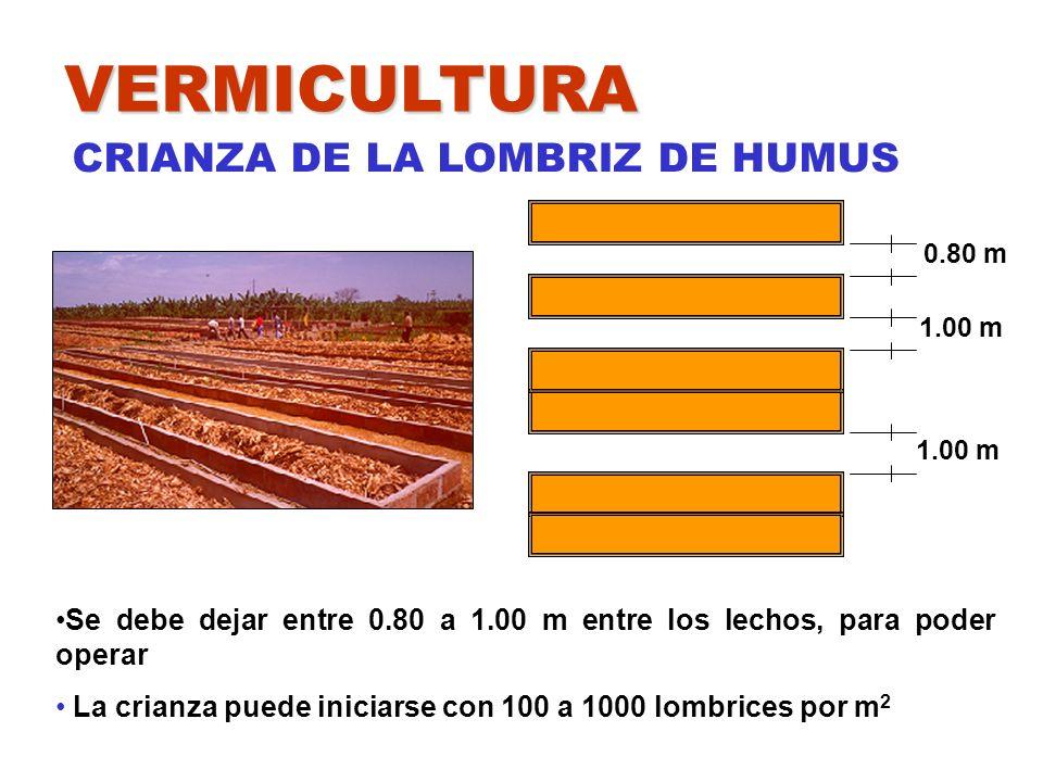 VERMICULTURA CRIANZA DE LA LOMBRIZ DE HUMUS 0.80 m 1.00 m 1.00 m