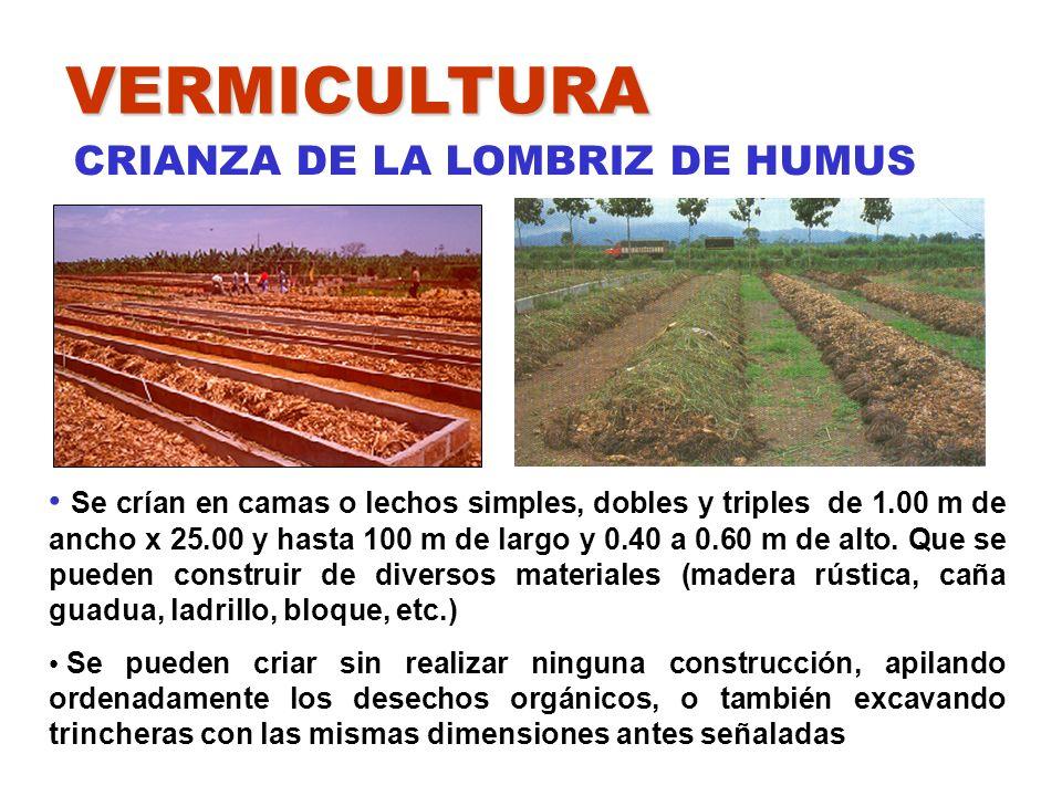 VERMICULTURA CRIANZA DE LA LOMBRIZ DE HUMUS