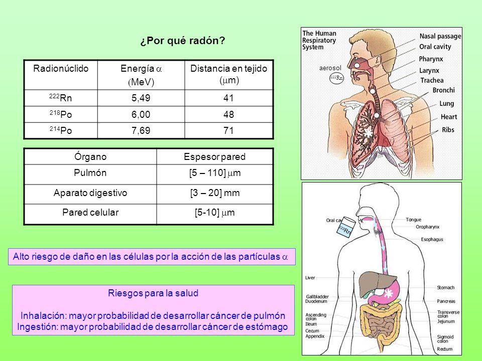 ¿Por qué radón Radionúclido Energía a (MeV) Distancia en tejido (mm)