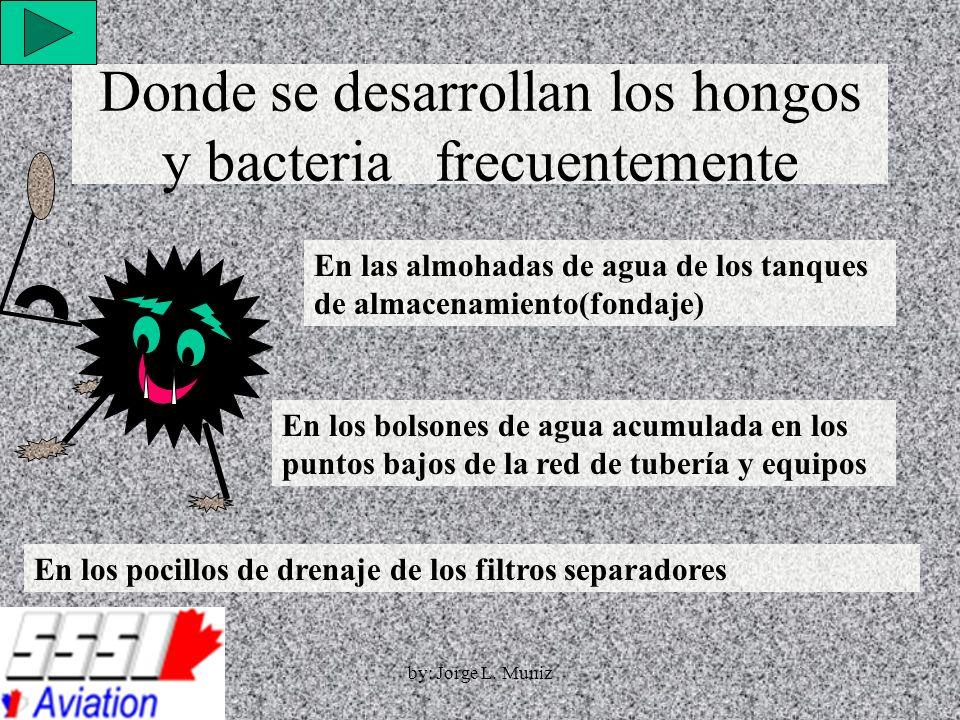 Donde se desarrollan los hongos y bacteria frecuentemente