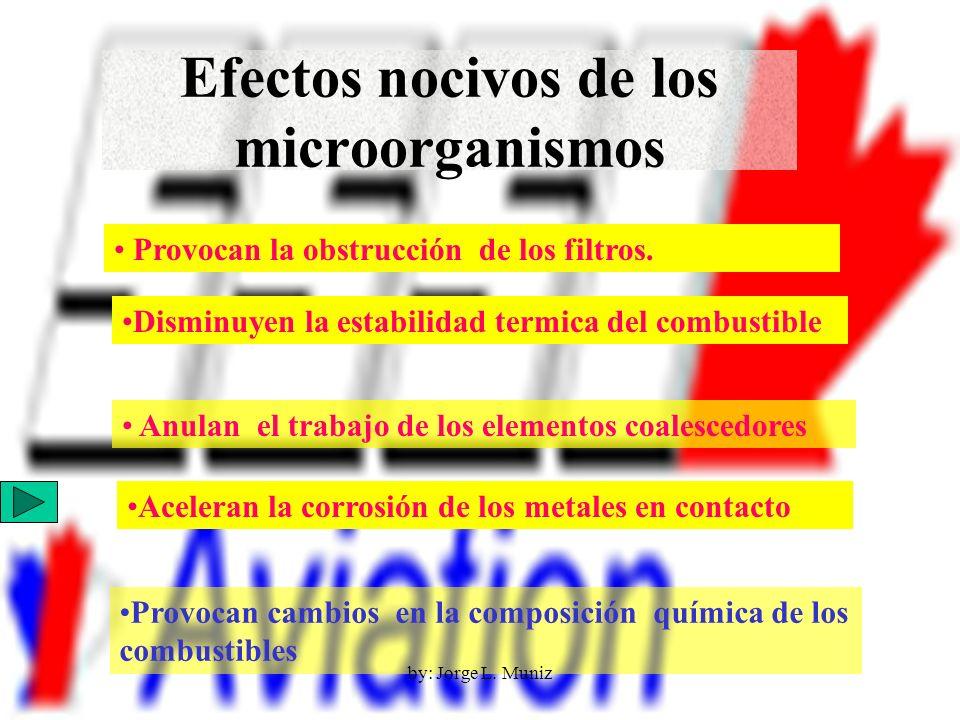 Efectos nocivos de los microorganismos